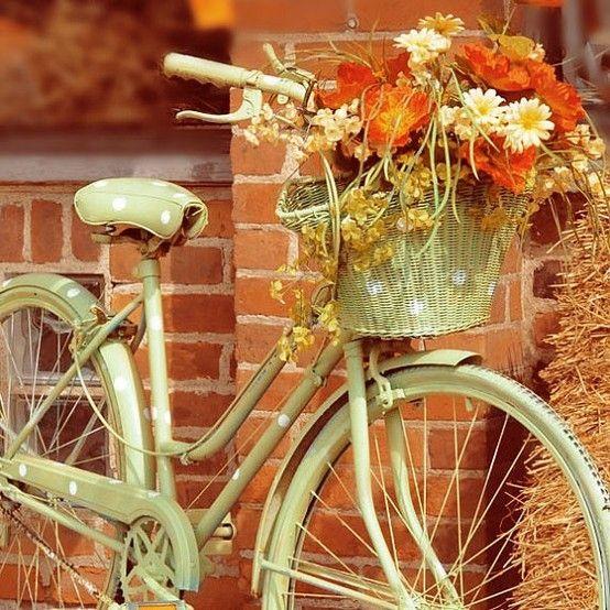 bike1